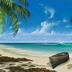Marco Island Paradise