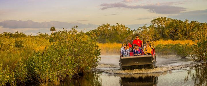 A Day Trip with Corey Billy's Airboat Rides