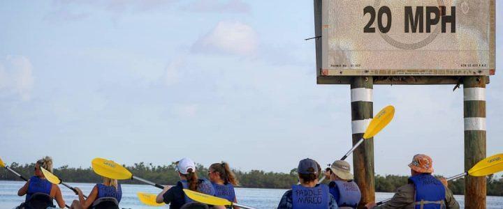 Kayaking Marco Island