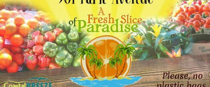 Marco Island Farmer's Market: A Fresh Slice of Paradise