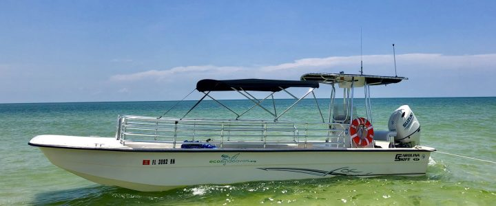 Boating Around Marco Island with Eco Endeavors